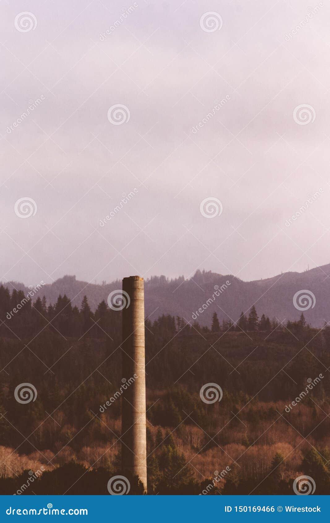 Высокорослый каменный штендер построенный в лесе