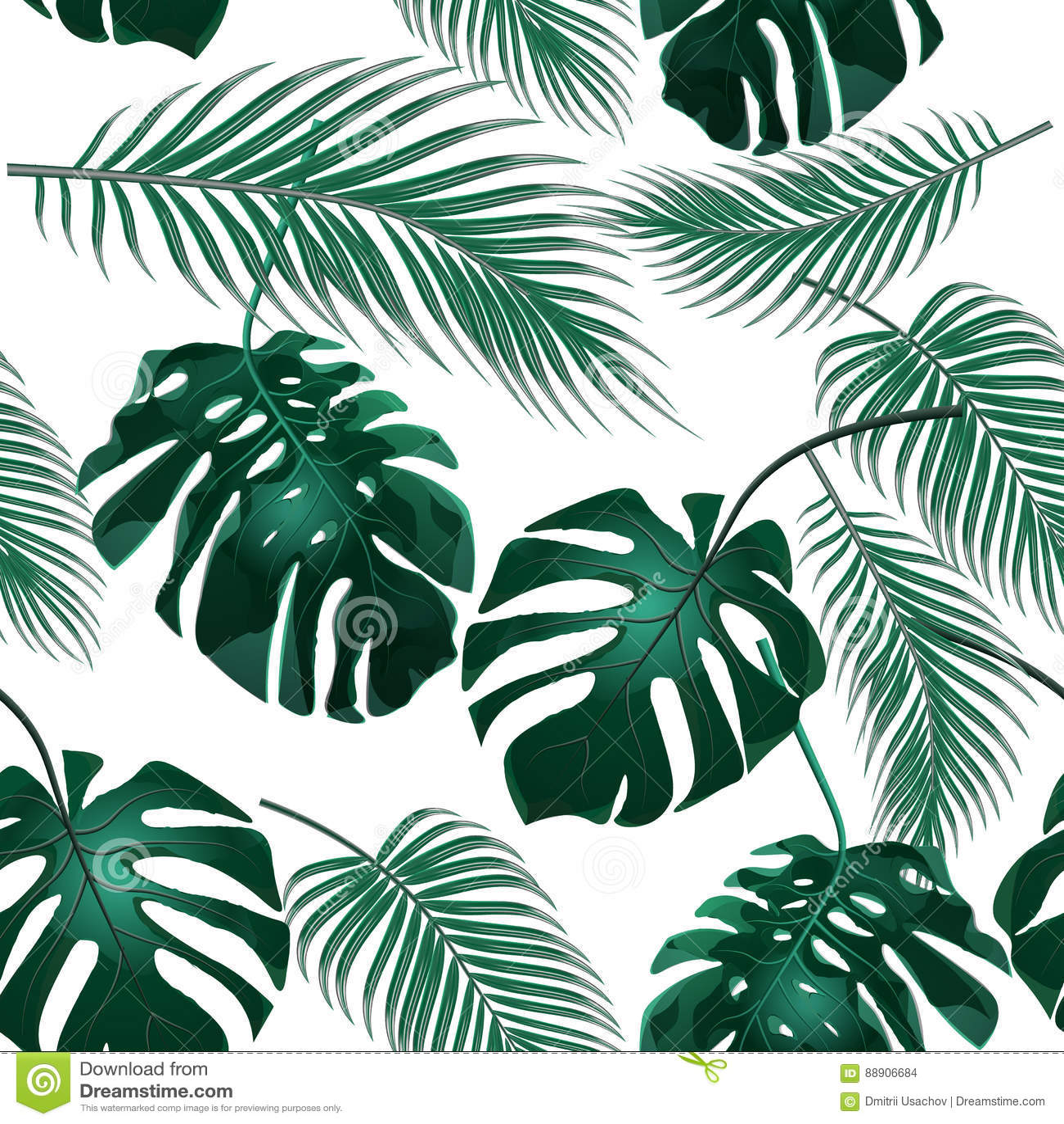 выходит ладонь тропической Чащи джунглей безшовное предпосылки флористическое Изолировано на белизне иллюстрация