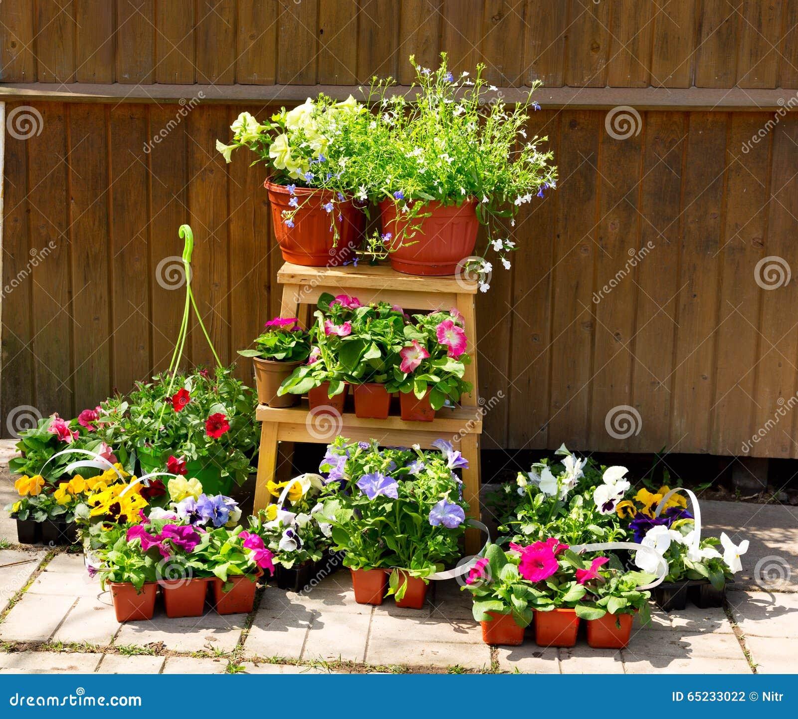 В горшке цветки с садовыми инструментами