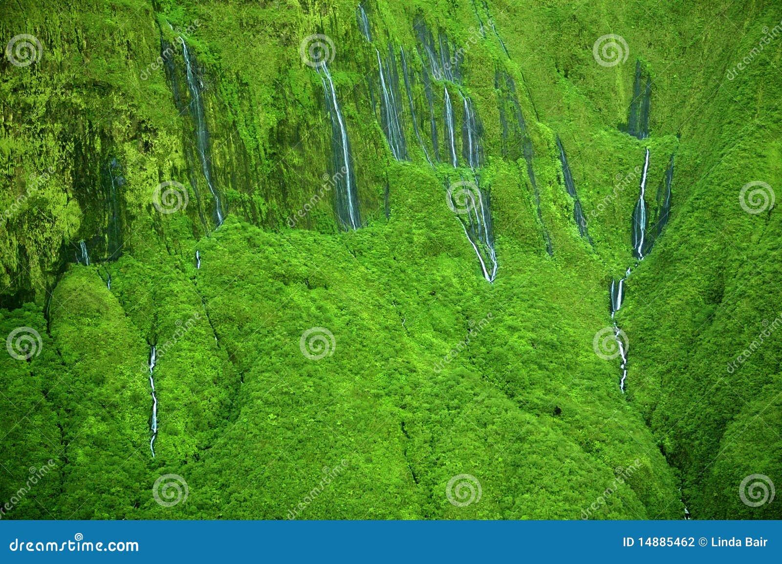 Гавайские островы maui срывают водопады стены