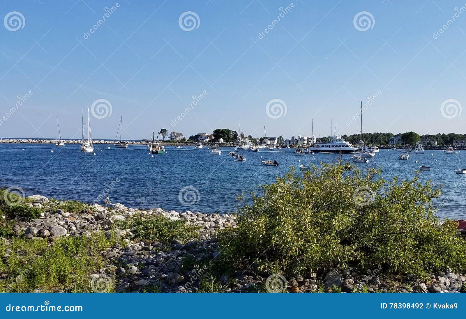 Гавань Rye - фунт омара и вахта кита
