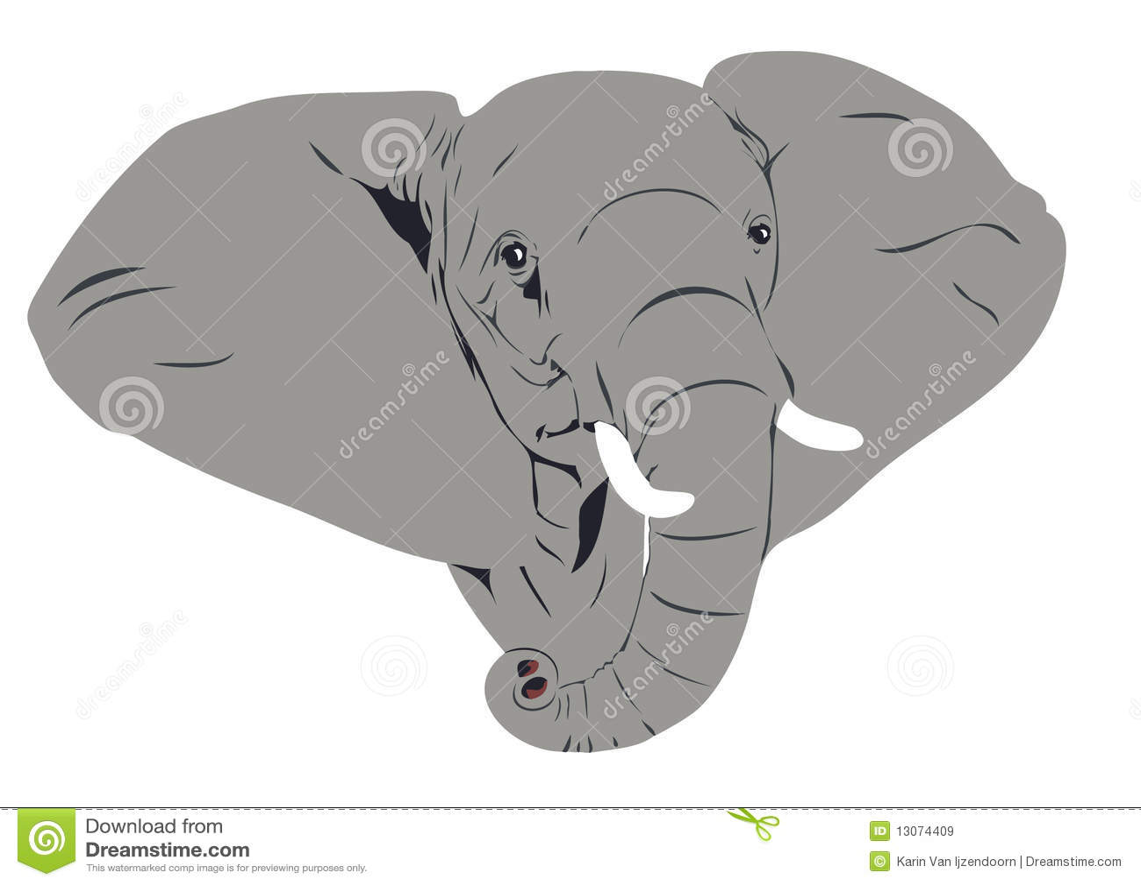 головка африканского слона
