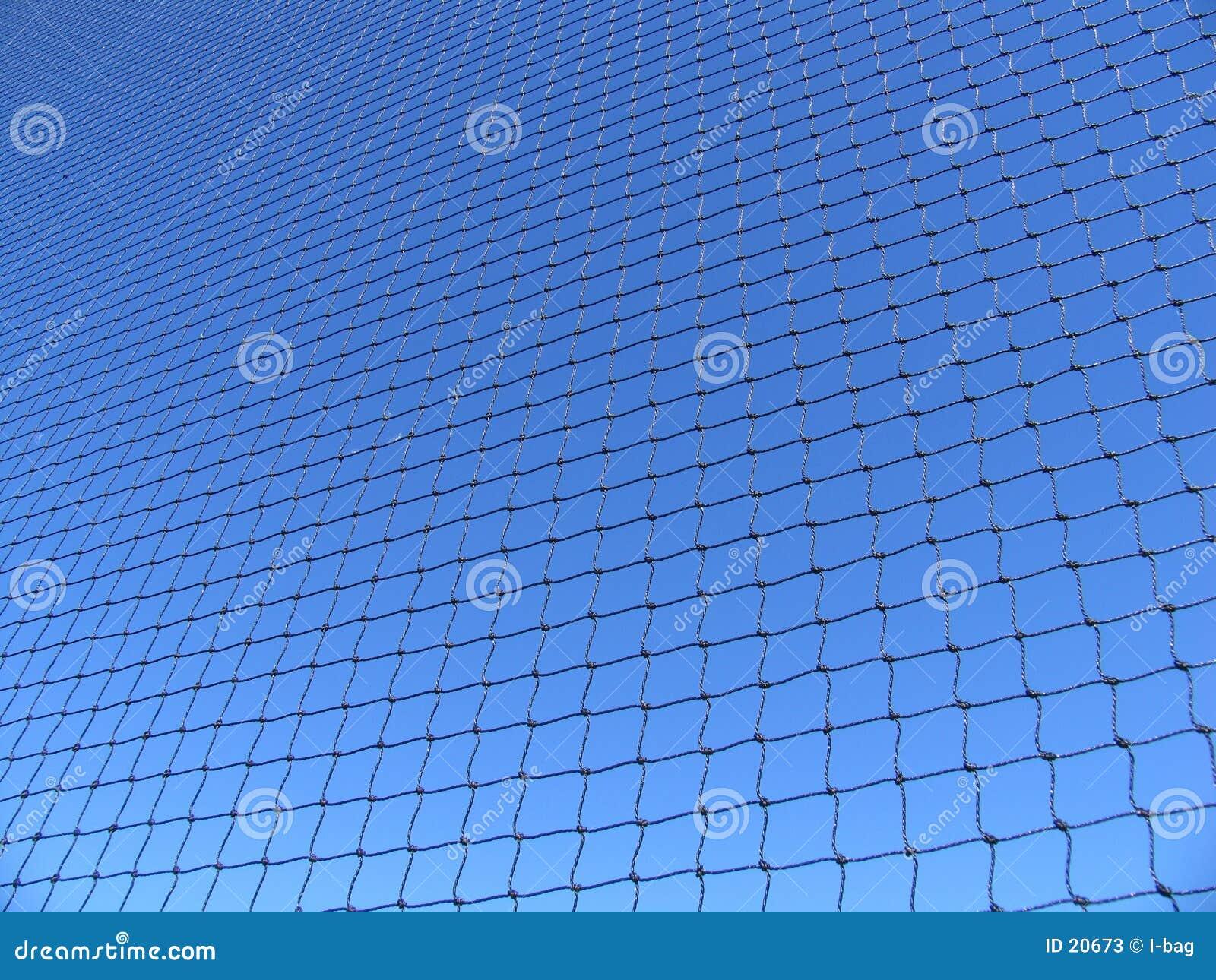 голубая сеть