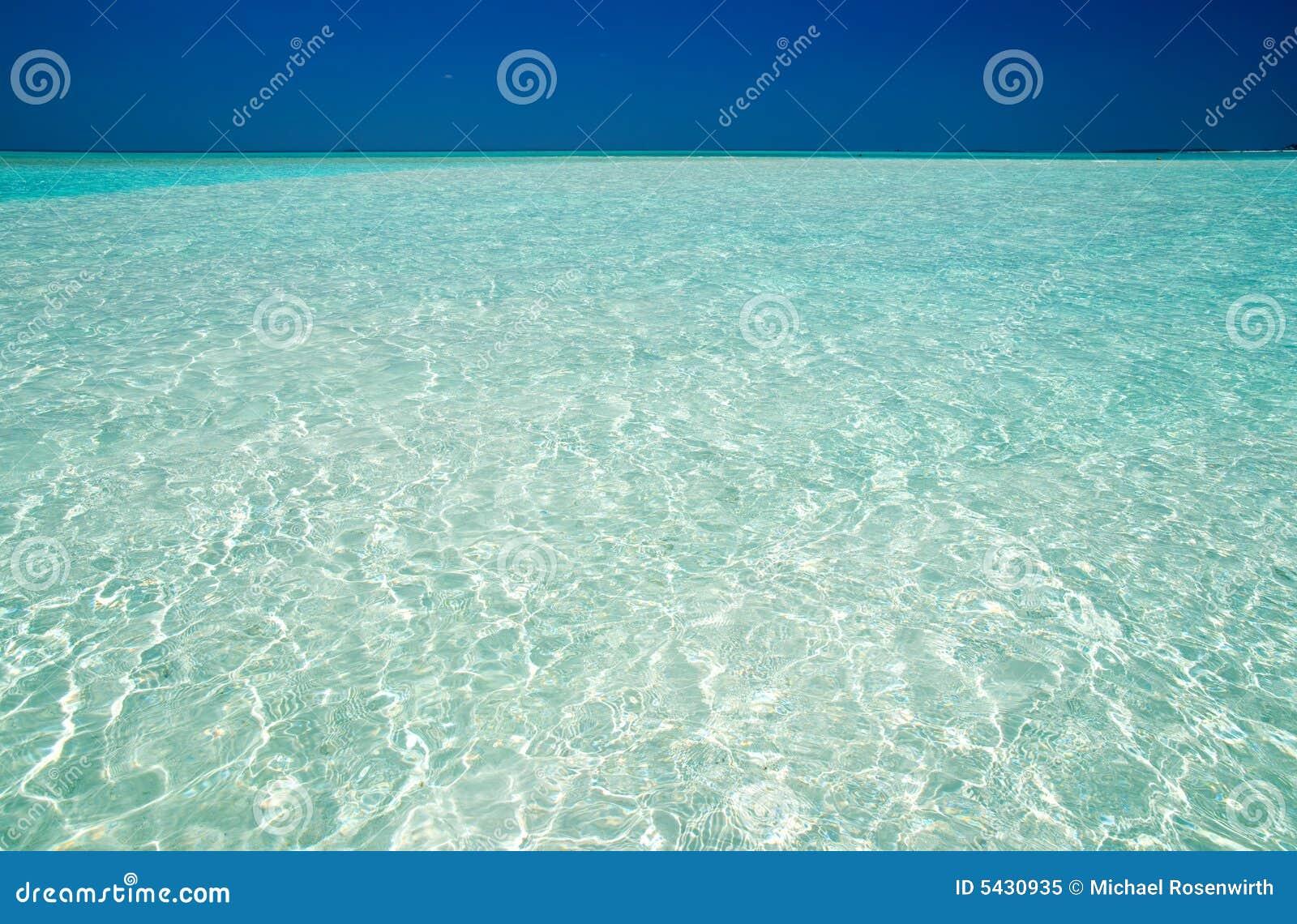 голубая ясная вода океана