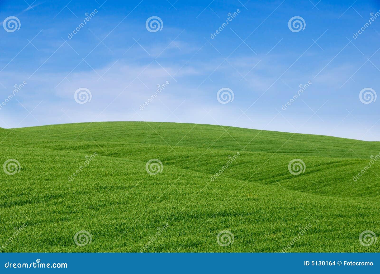 голубое небо зеленых холмов