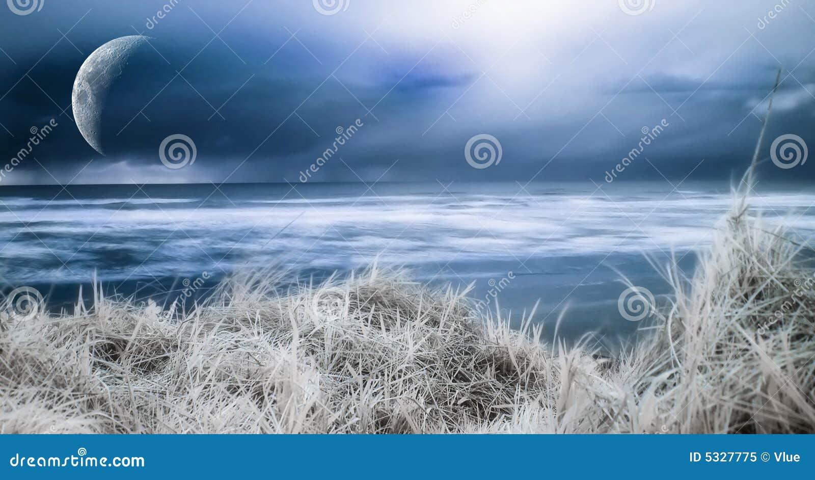 голубой берег океана
