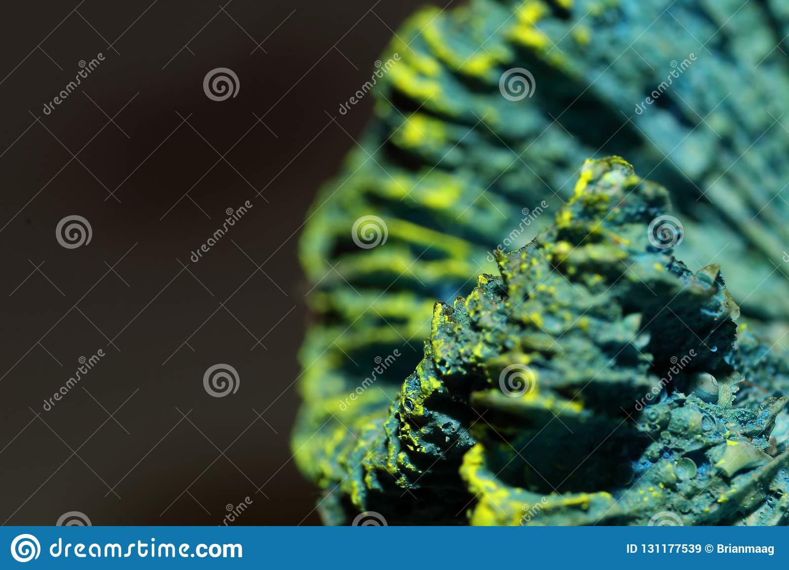 Голубой каркасный коралл