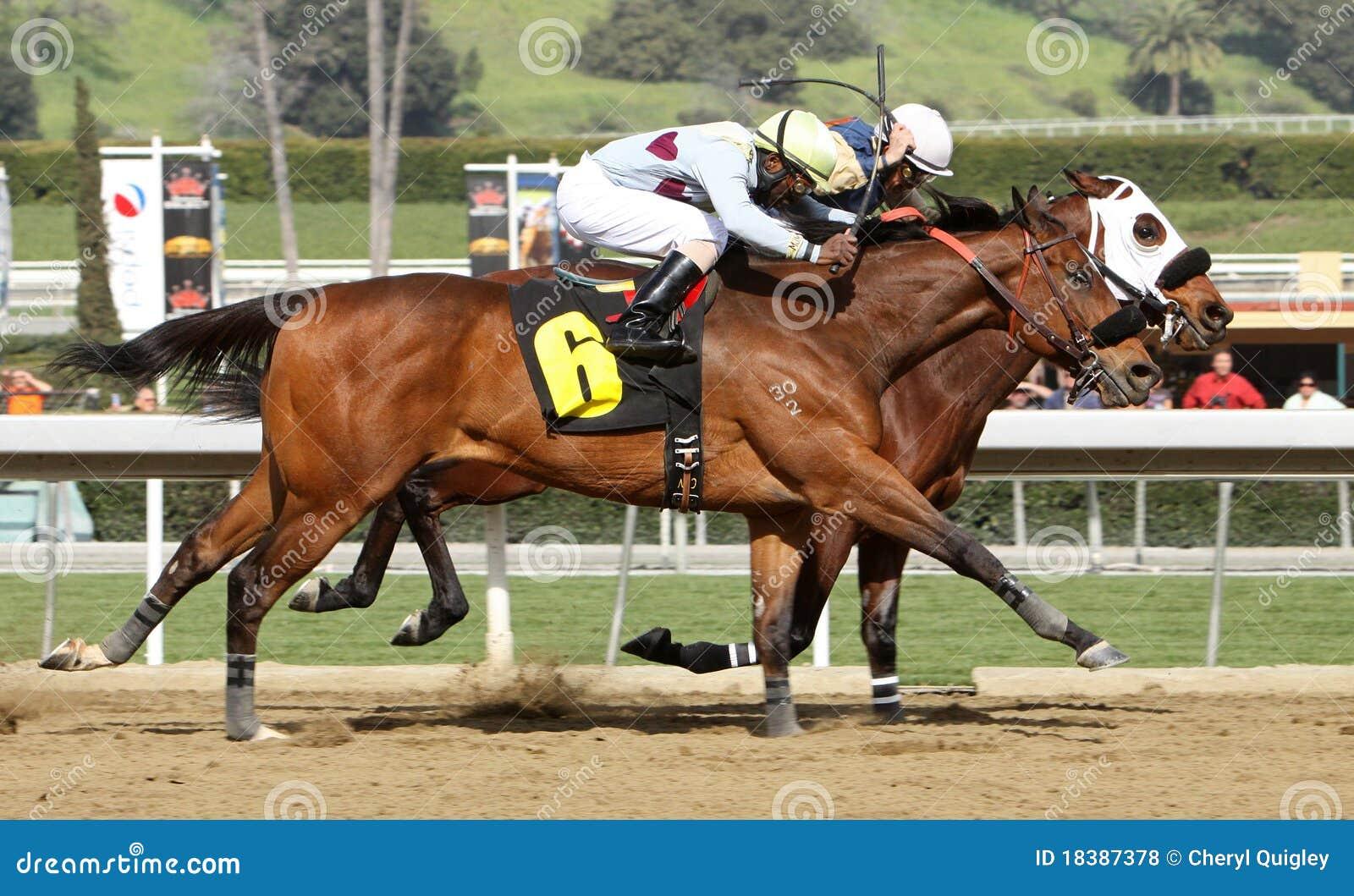 гонка шеи лошади