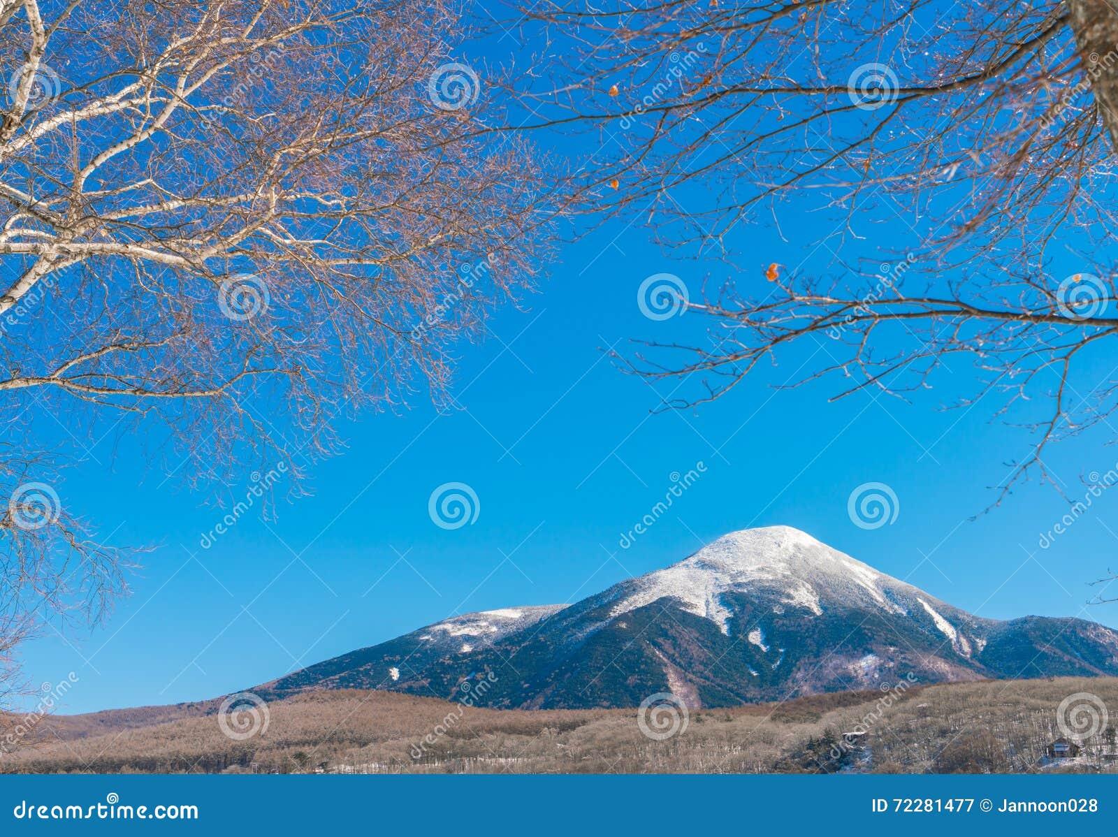 Download Гора зимы Японии стоковое изображение. изображение насчитывающей гора - 72281477