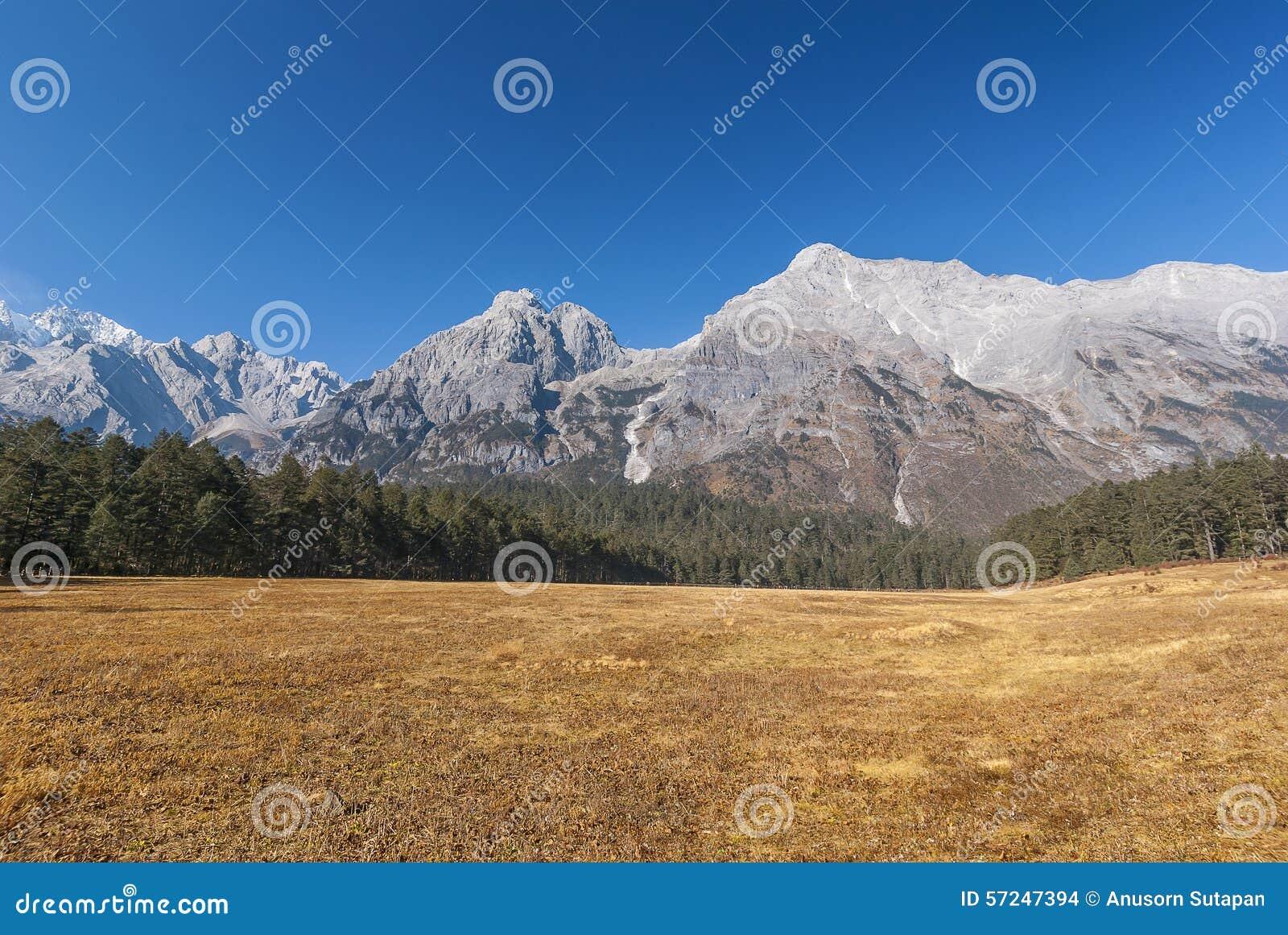 Гора снежка дракона нефрита