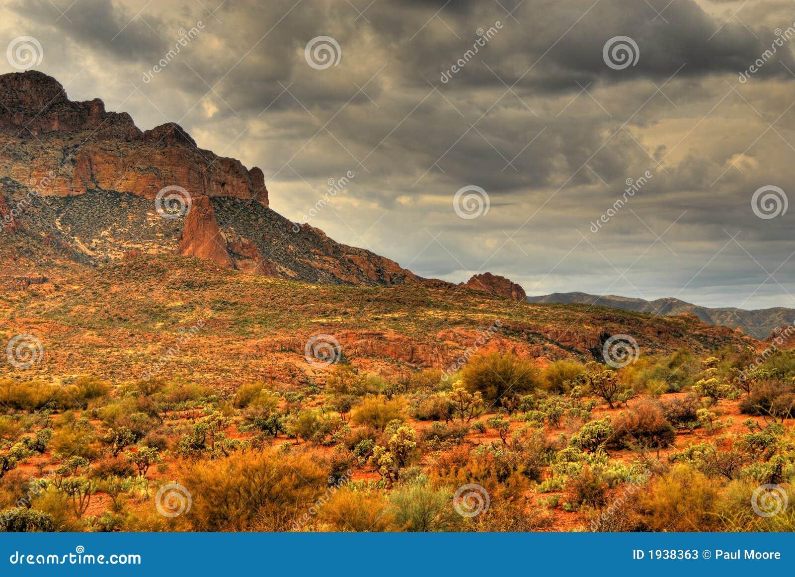 гора 105 пустынь