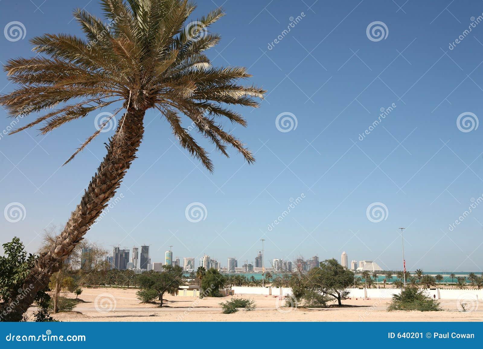 Download горизонт doha новый стоковое изображение. изображение насчитывающей взгляд - 640201