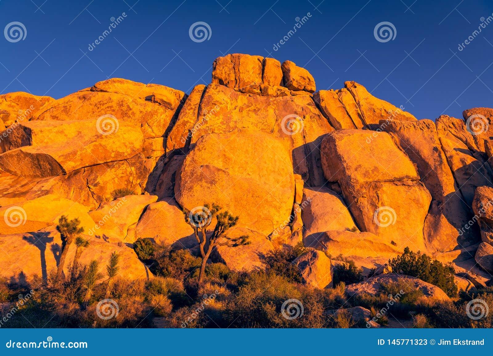 Горная порода, скалы, и валуны накаляют оранжевыми и золотами в выравниваясь свете захода солнца на национальном парке дерева Иеш