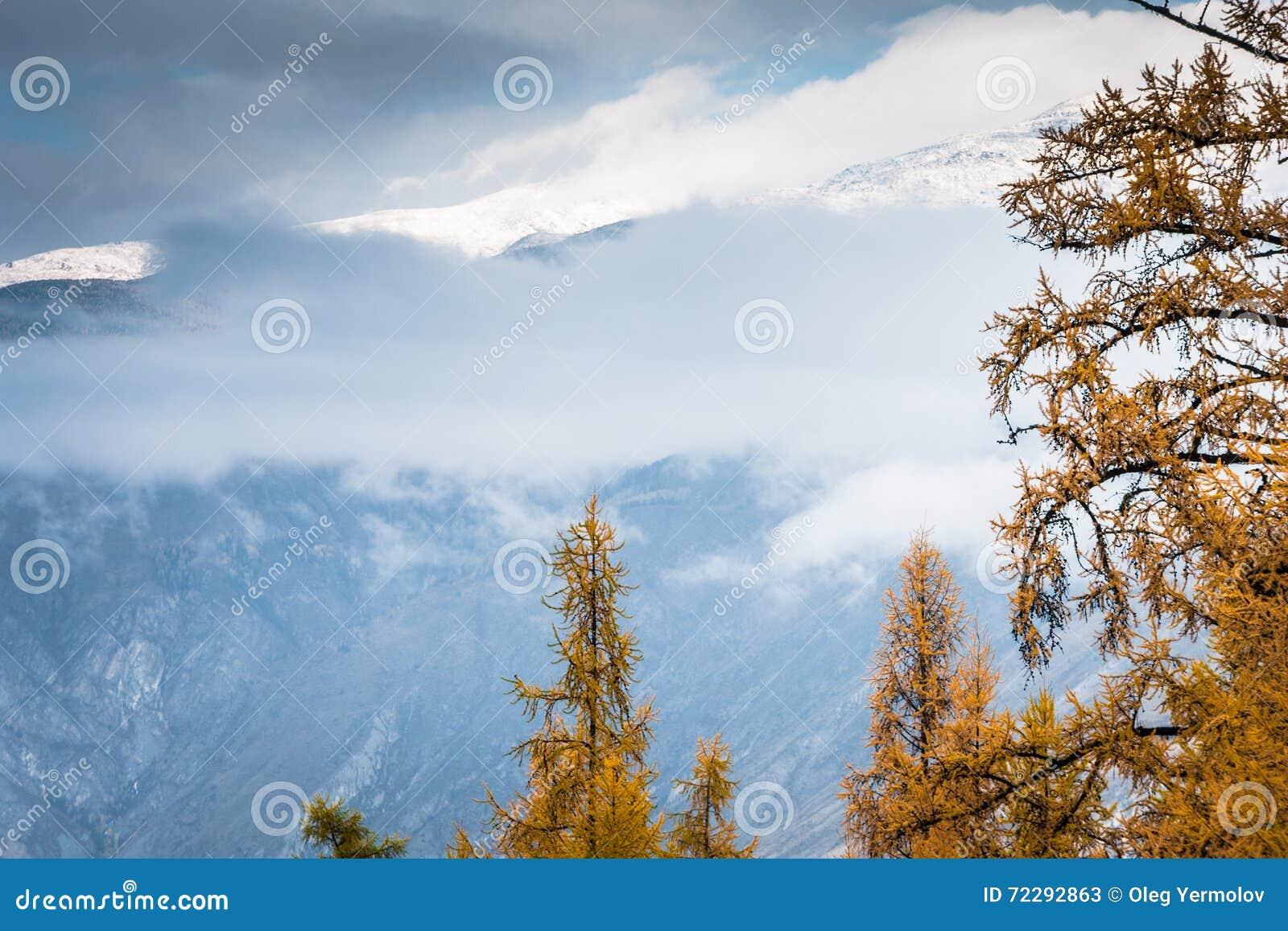 Download Горы и деревья осени стоковое изображение. изображение насчитывающей напольно - 72292863