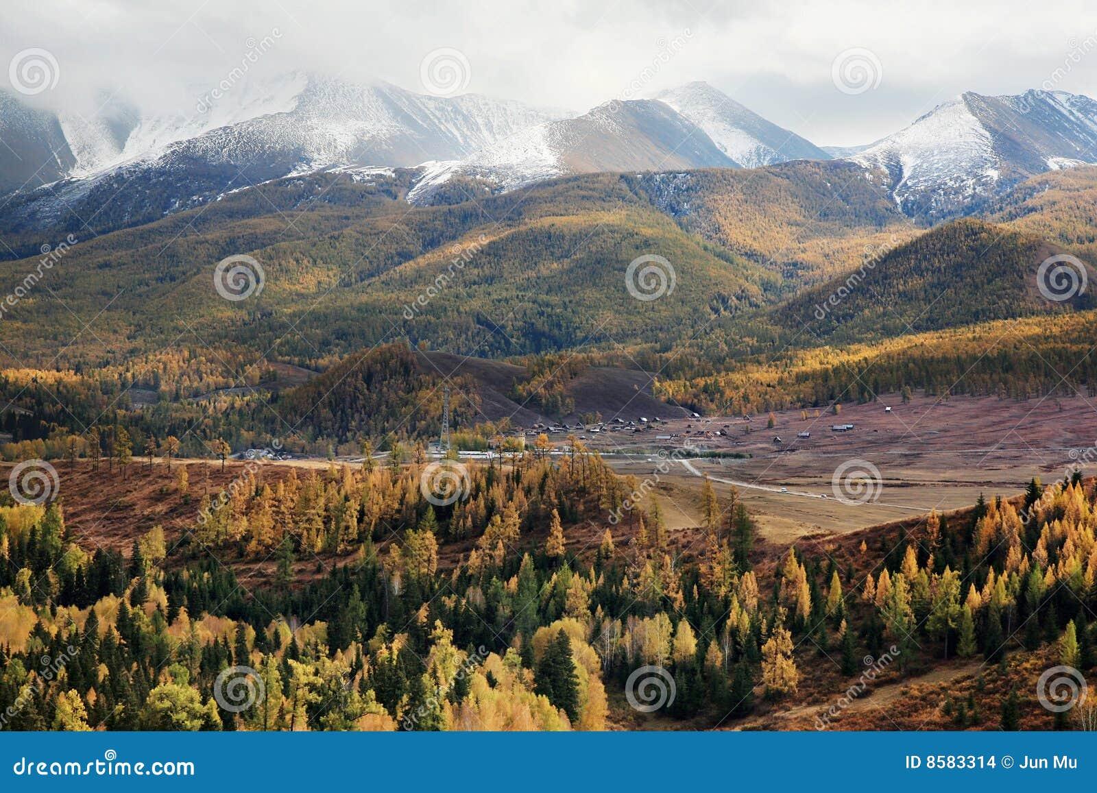 горы пущи