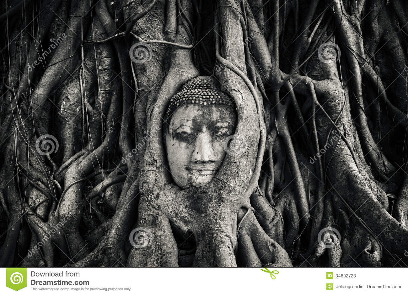 Голова Buddhas