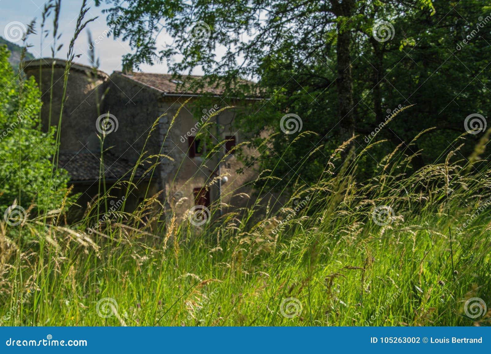 Грандиозные viopis, drome, Франция