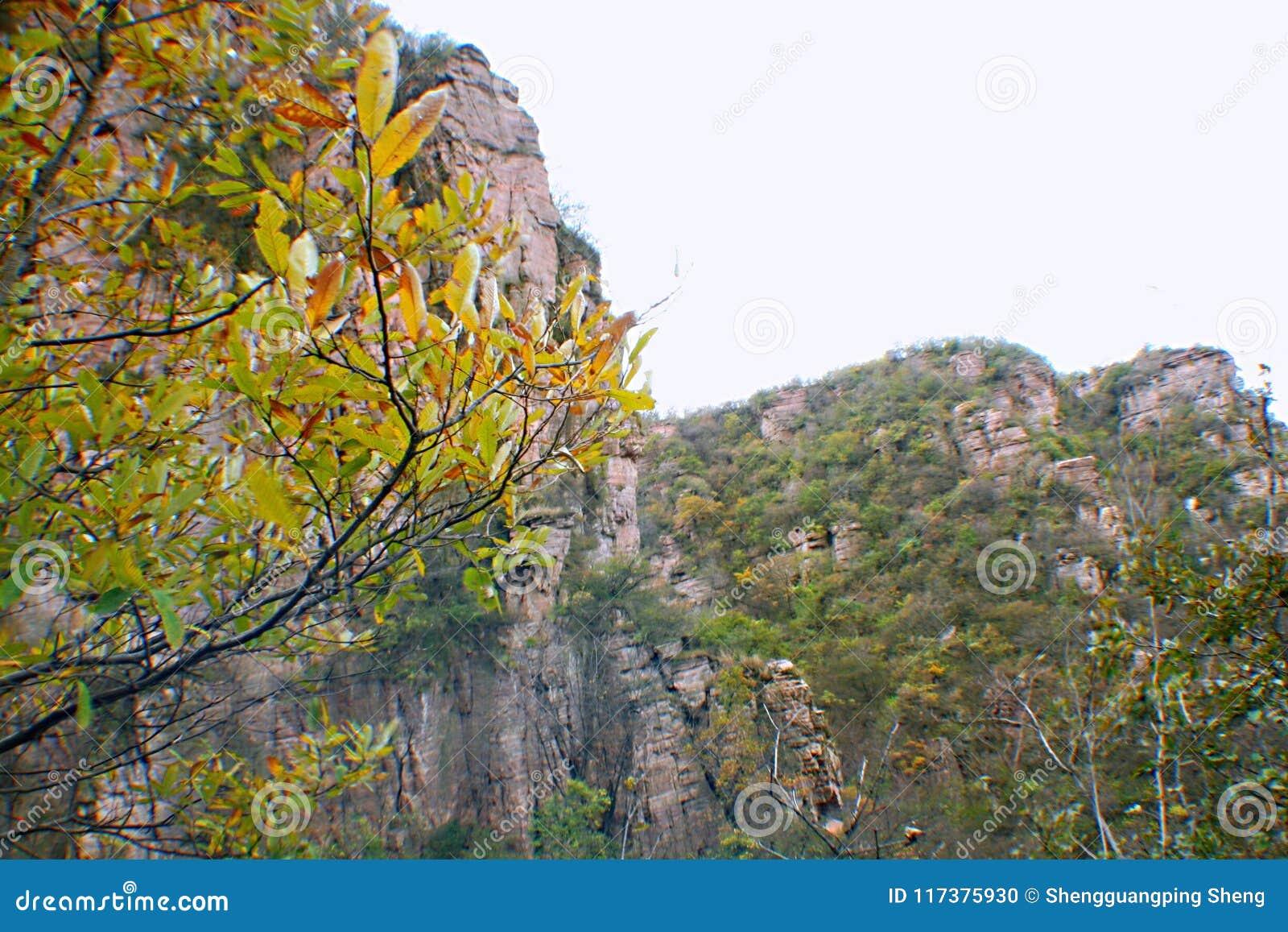 Гранд-каньон Yangshao