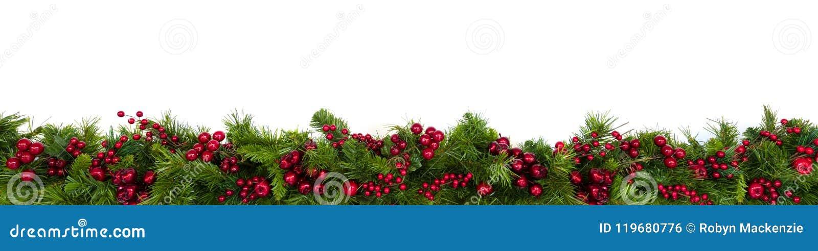 Граница гирлянды рождества с красными ягодами над белизной