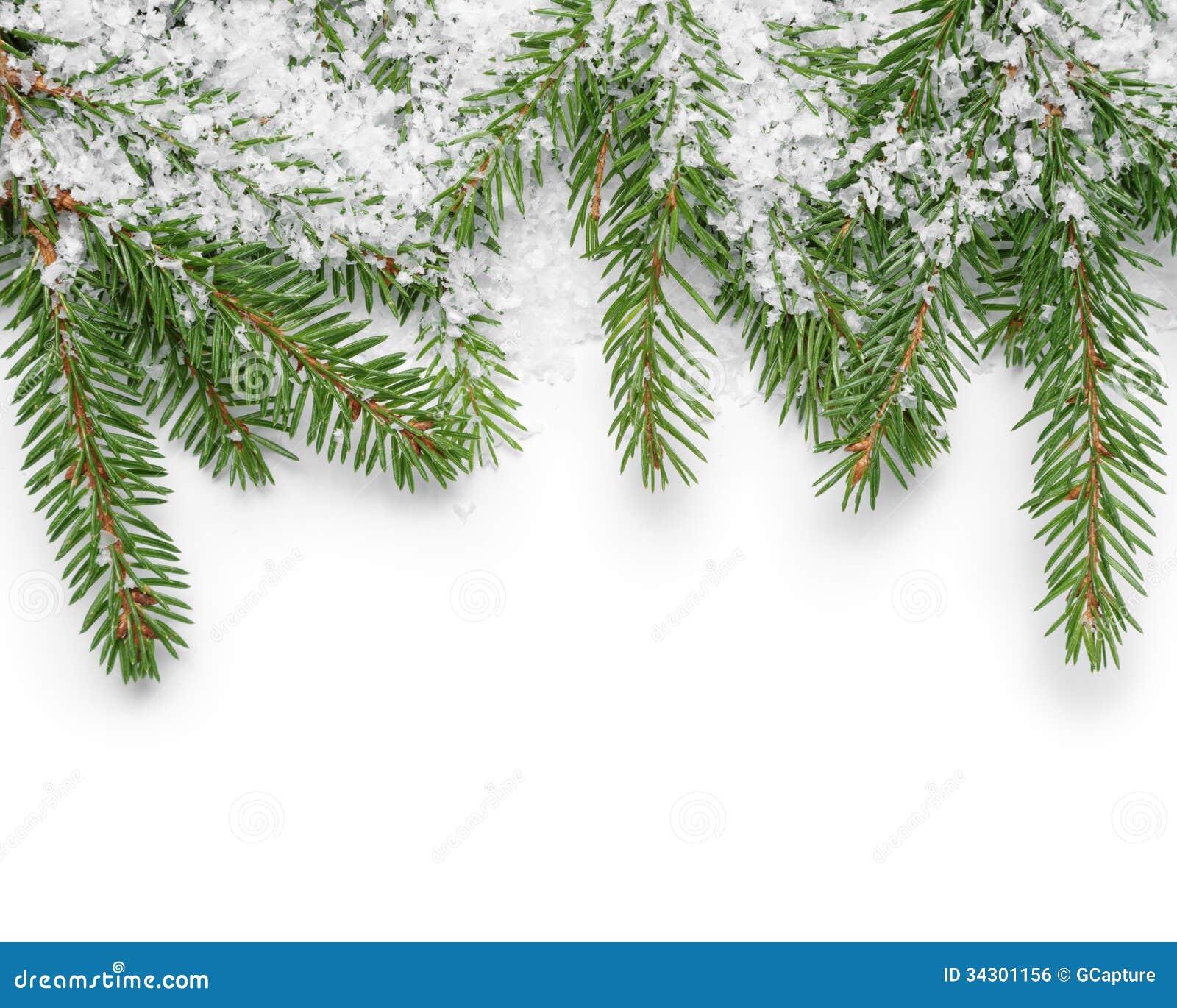 Граница от хворостин ели и поддельного снега