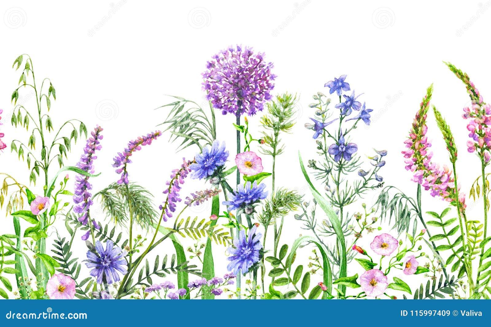 Граница полевых цветков безшовная горизонтальная
