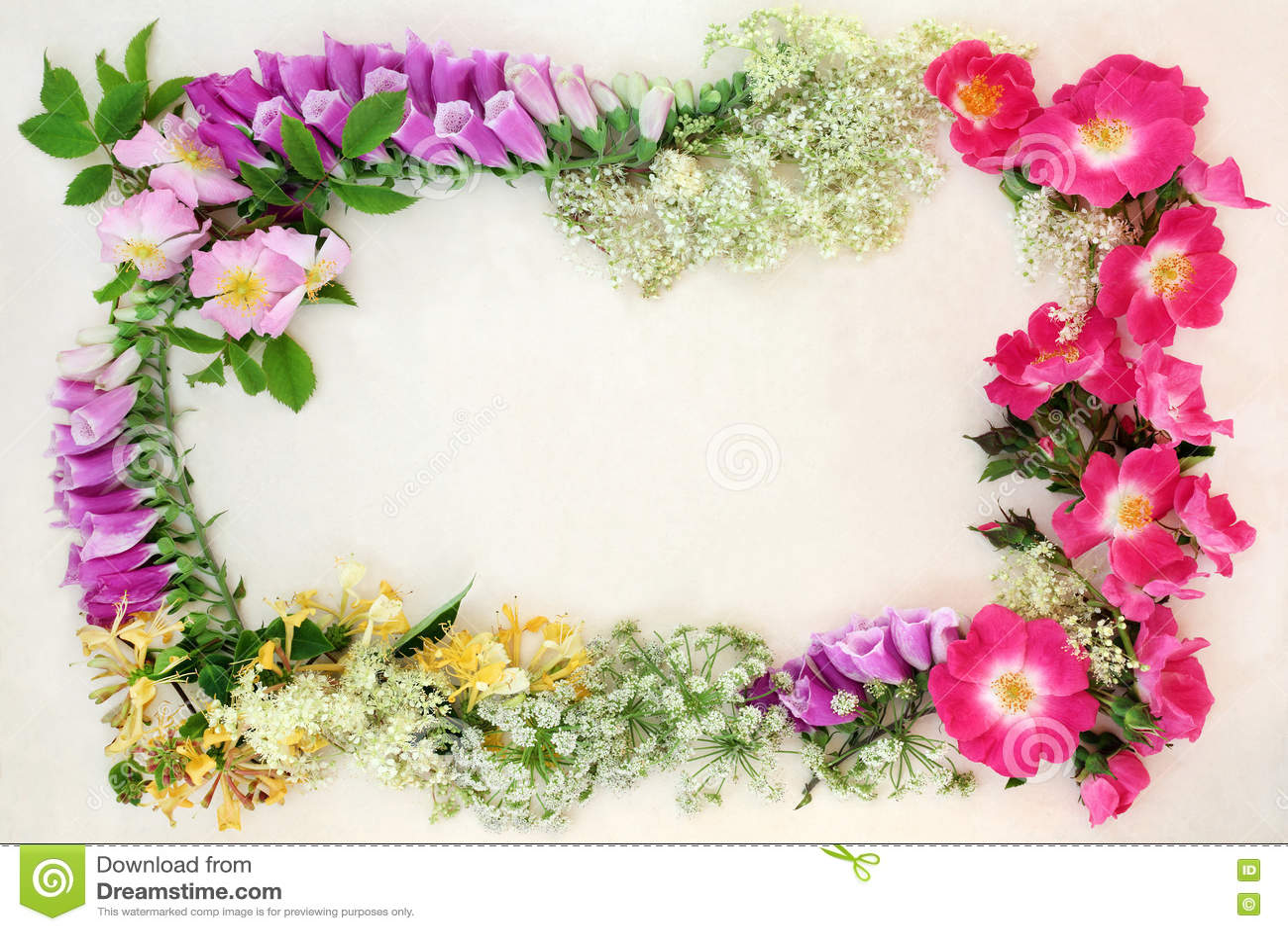 Граница предпосылки Wildflower