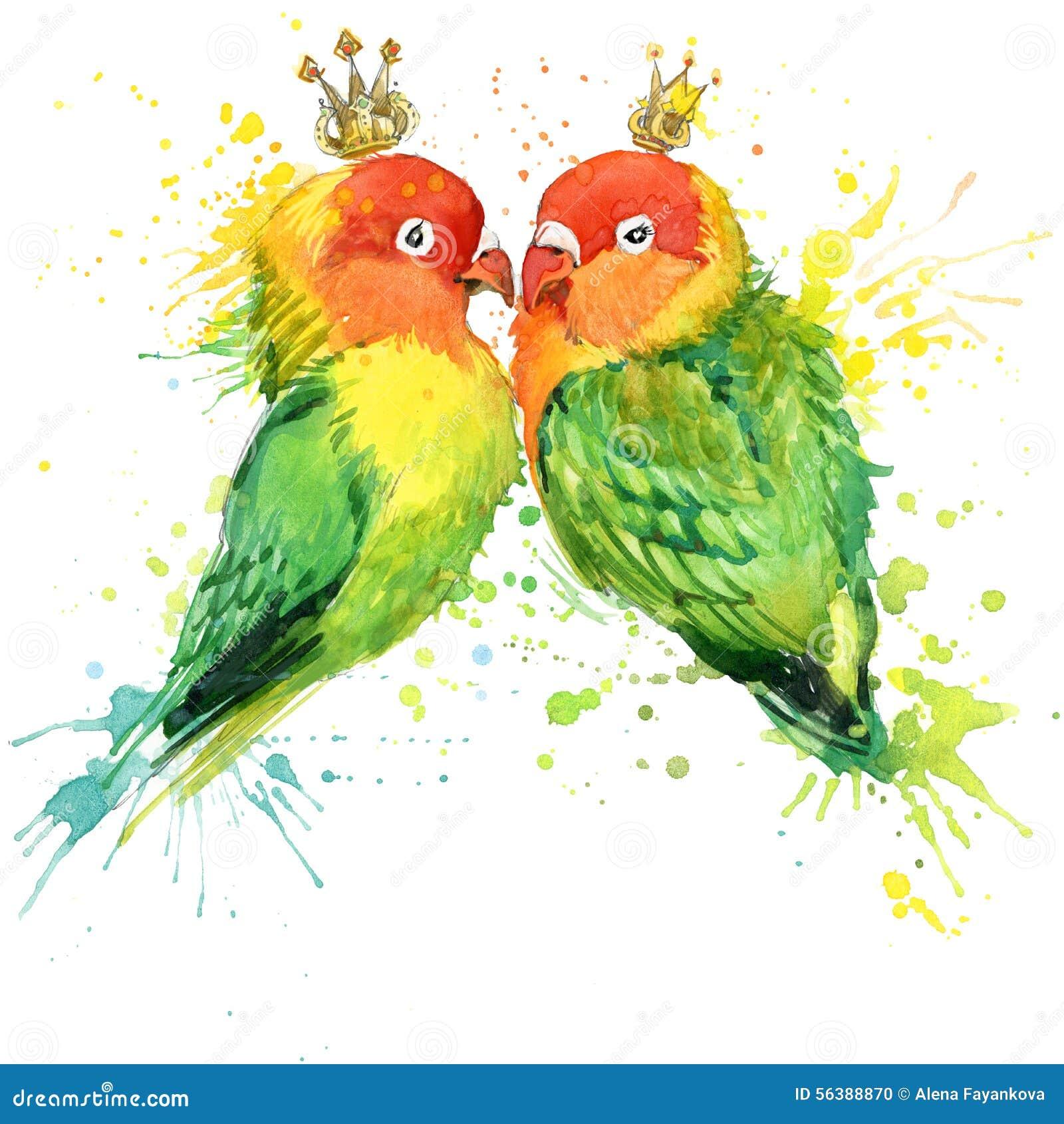 Графики футболки попугая семьи Иллюстрация попугая с предпосылкой выплеска текстурированной акварелью необыкновенная акварель p и