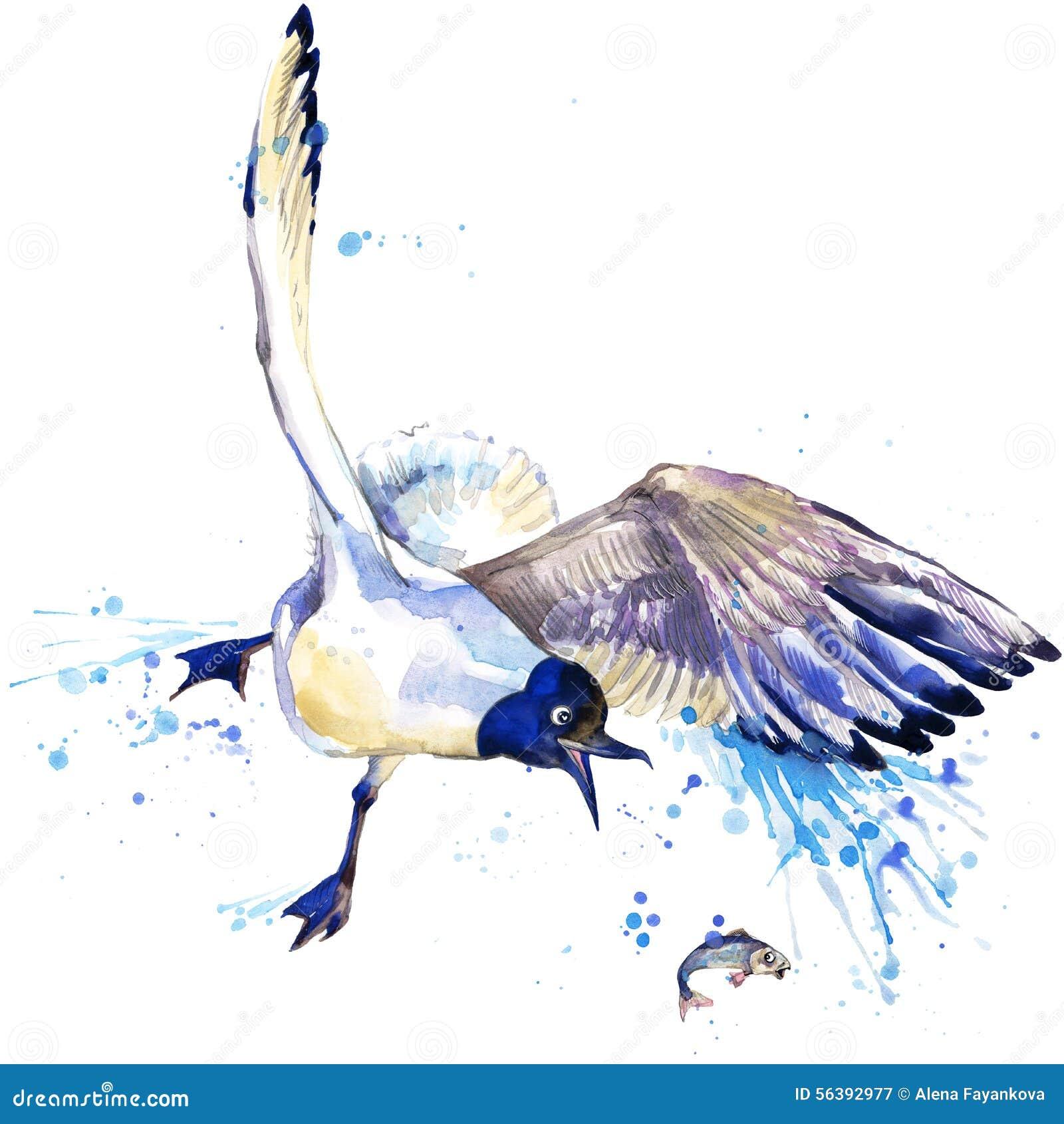 Графики футболки чайки иллюстрация чайки с предпосылкой выплеска текстурированной акварелью необыкновенное seagul акварели иллюст
