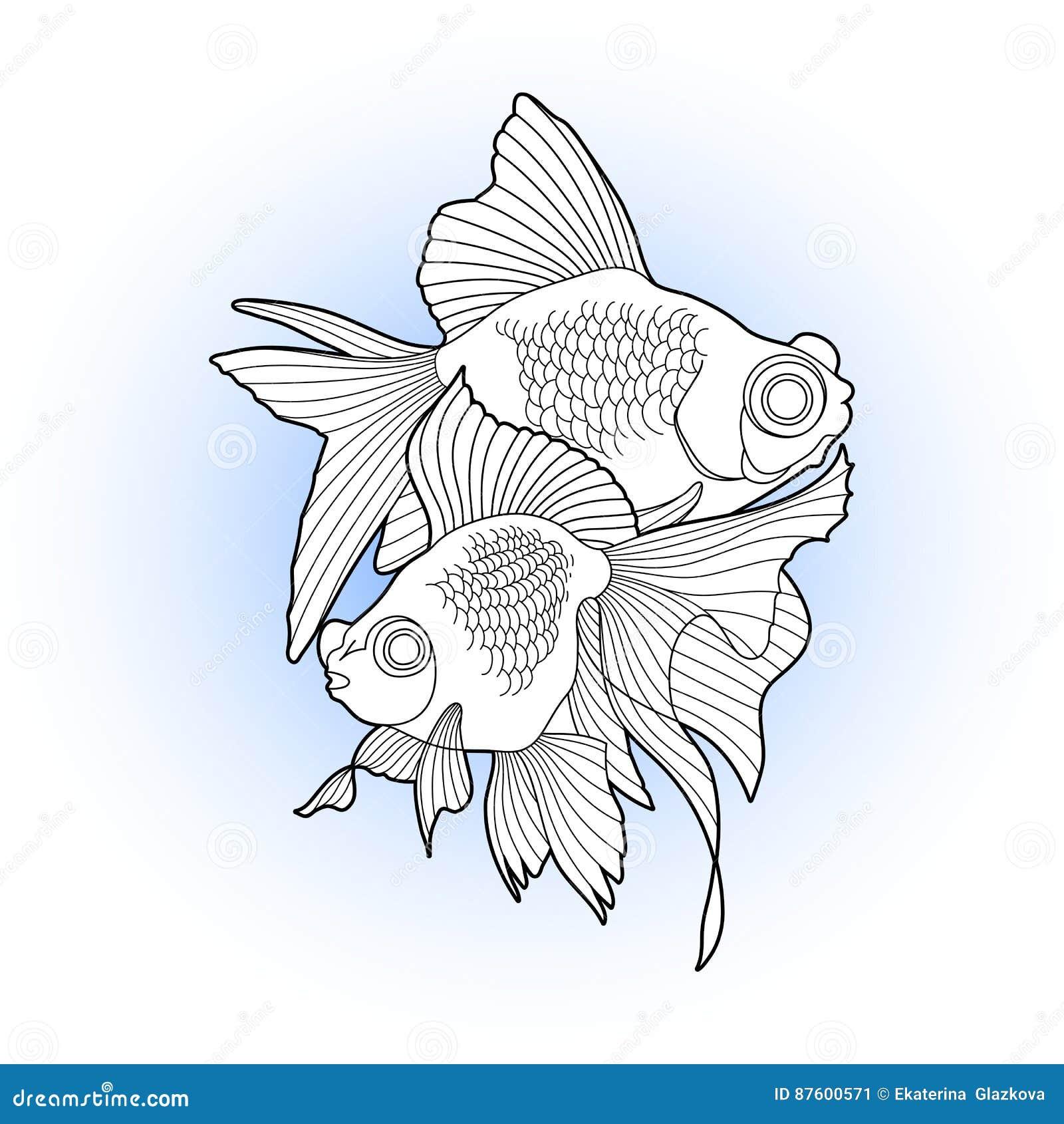 Рыбка телескоп: содержание, кормление и совместимость рыбки в ...   1390x1300