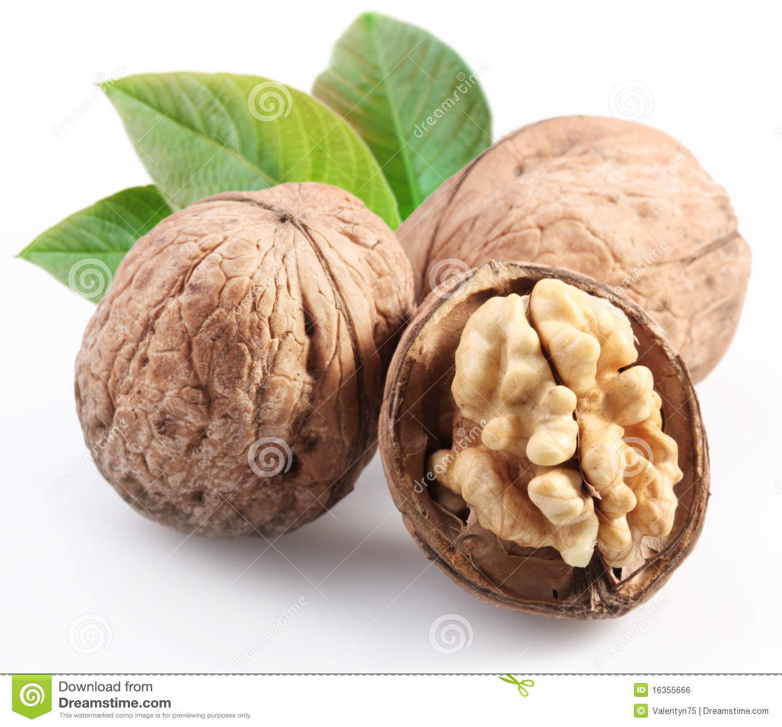 грецкие орехи листьев