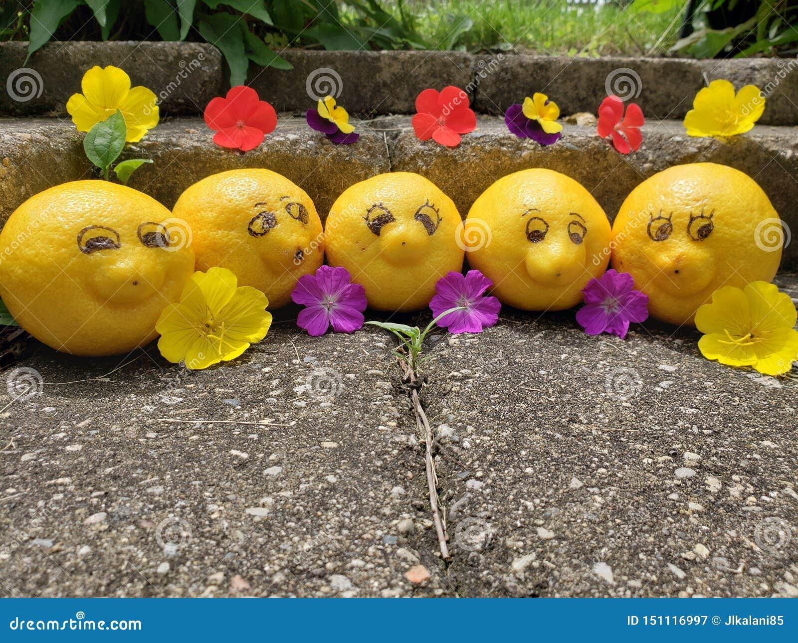 Группа в составе счастливые, усмехаясь лимоны принимает время вне пока на каникулах представить для камеры