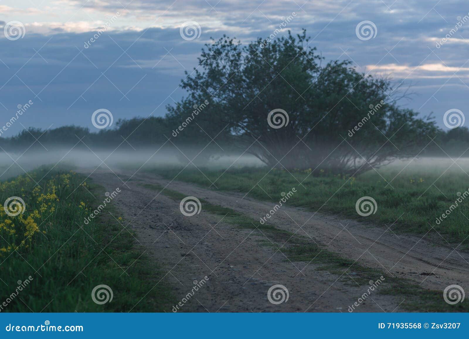 Грязная улица в пшеничном поле на туманном утре
