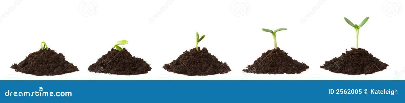 грязь складывает последовательность завода