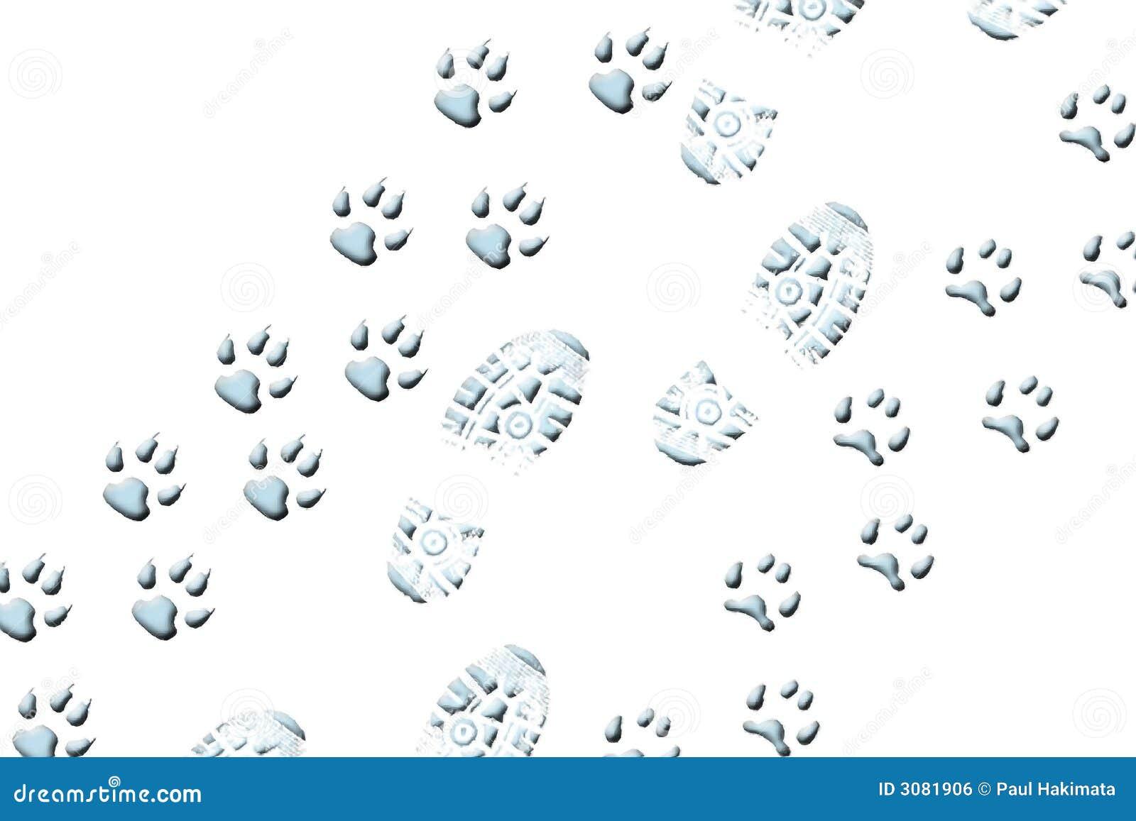 гулять животных
