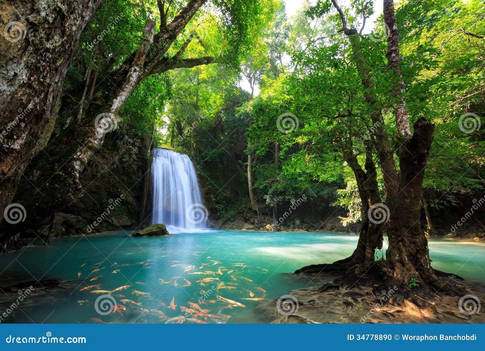 Глубокий водопад леса