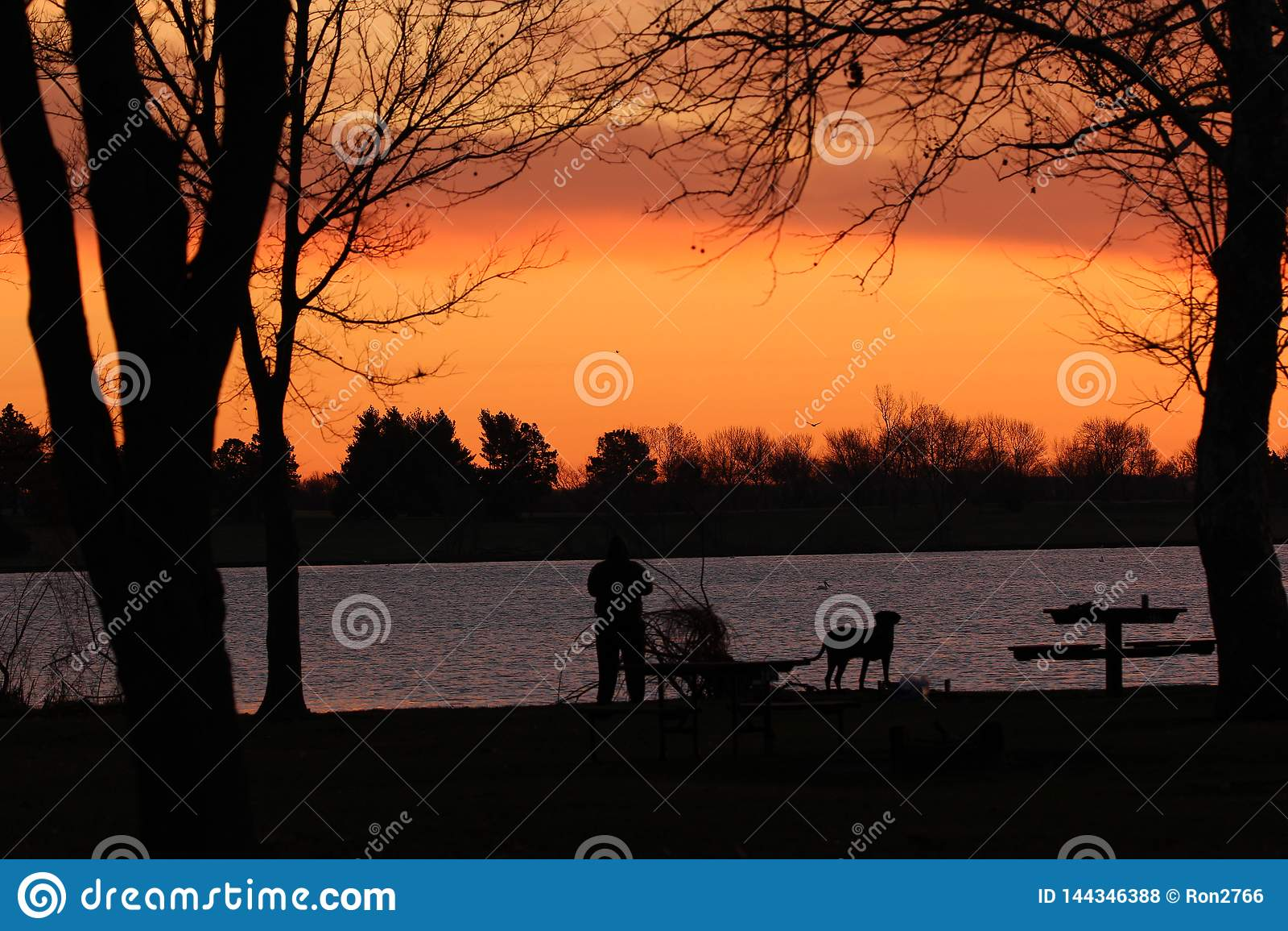 Дама и ее рыбная ловля собаки в раннем утре