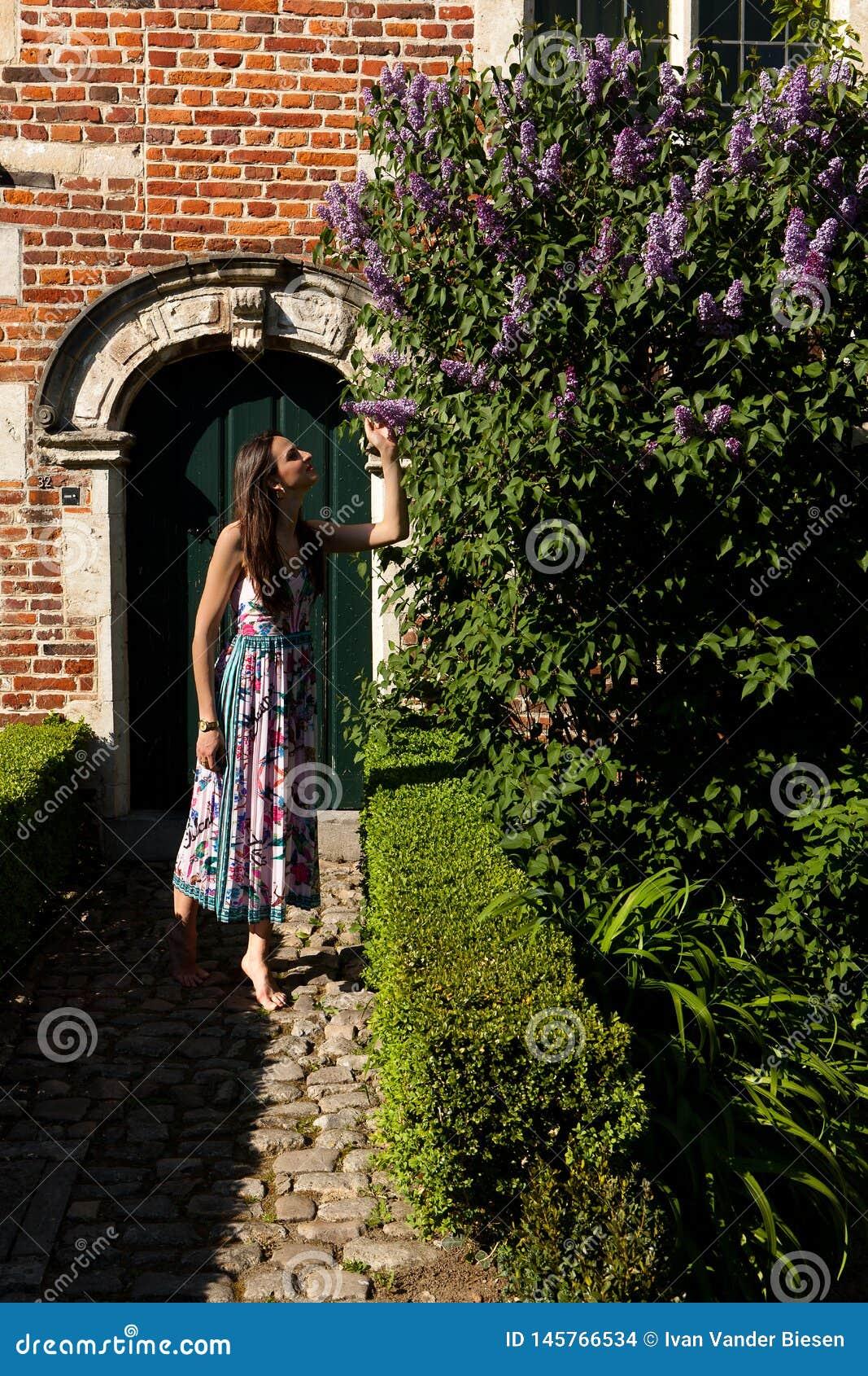 Дверь стены syringa сирени солнца женщины, Groot Begijnhof, лёвен, Бельгия