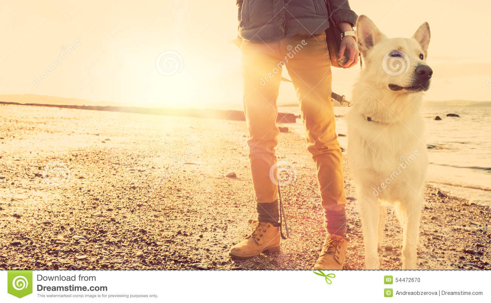 Девушка битника играя с собакой на пляже во время захода солнца, сильного влияния пирофакела объектива