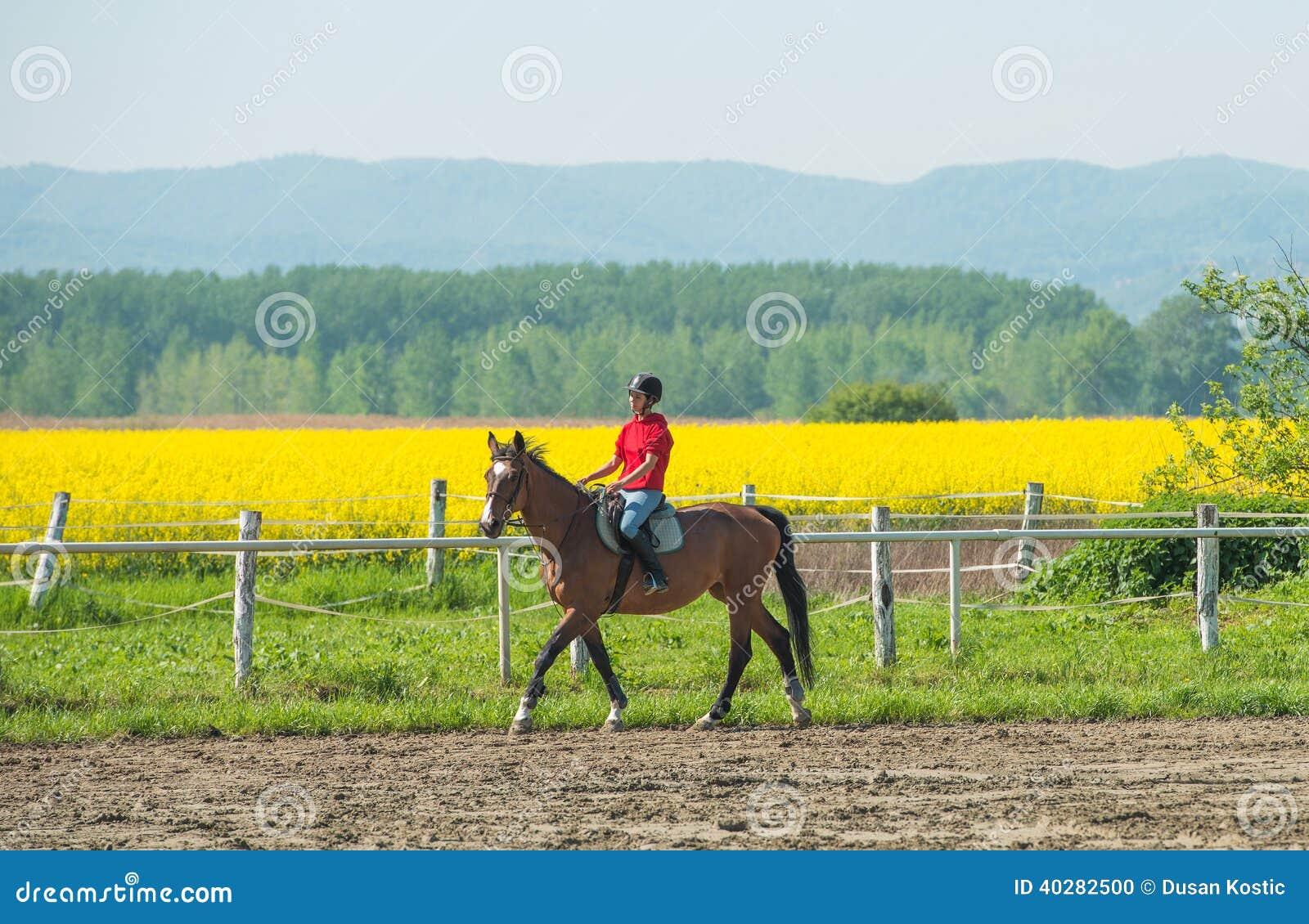 Девушка ехать лошадь