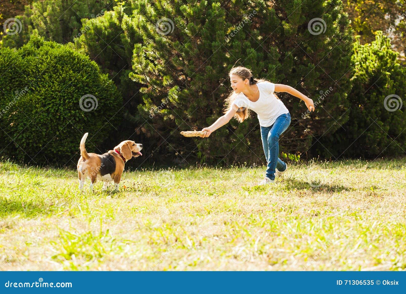 пес засаживае девушке видио