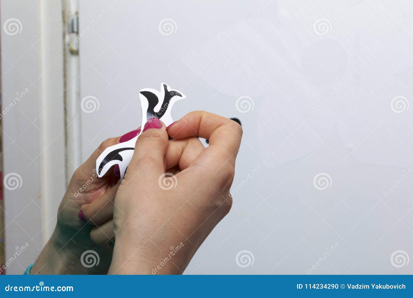 Девушка клеит элементы отрезка вне от бумаги само-прилипателя, для того чтобы замаскировать дефекты белой двери