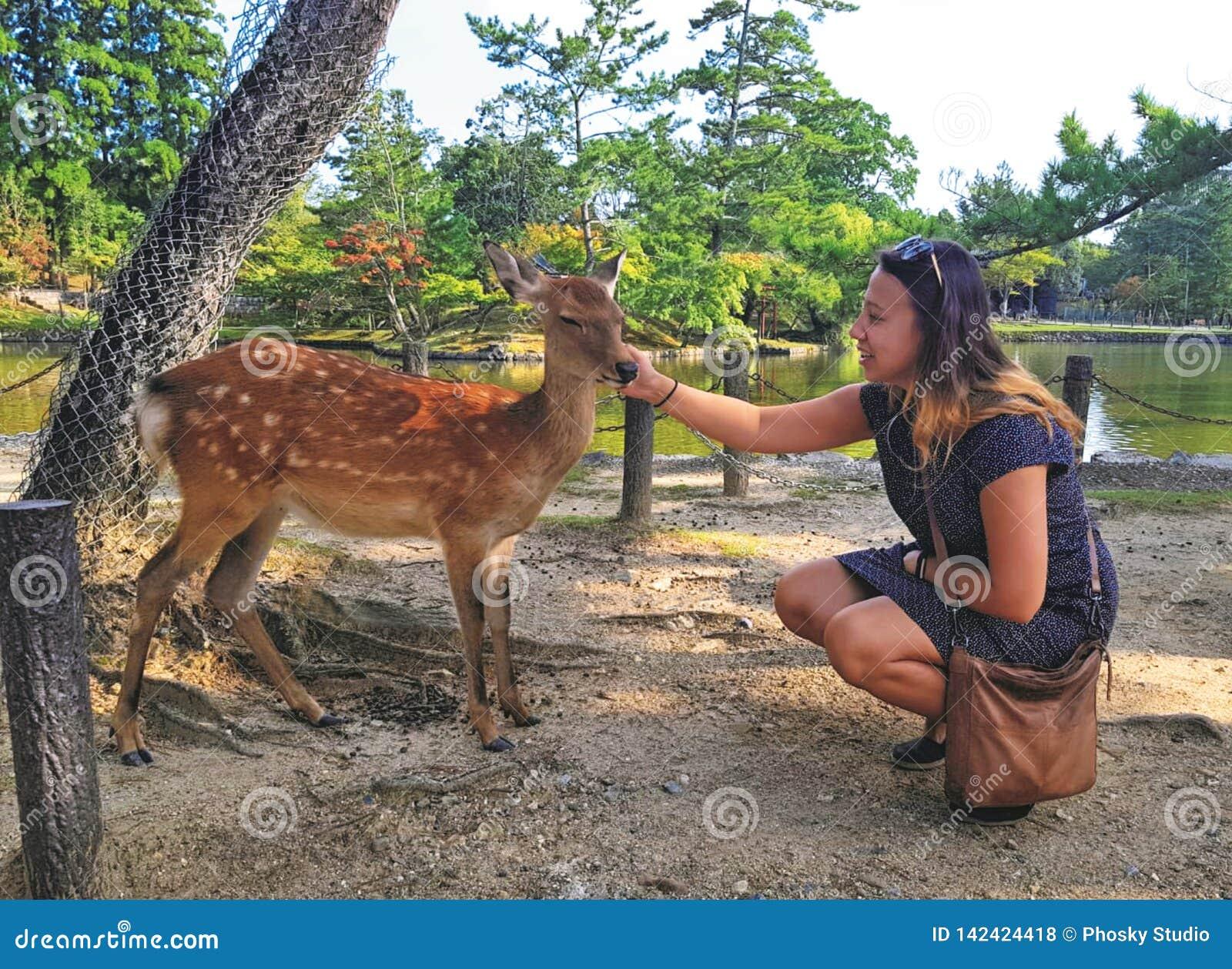 Девушка ласкает оленей