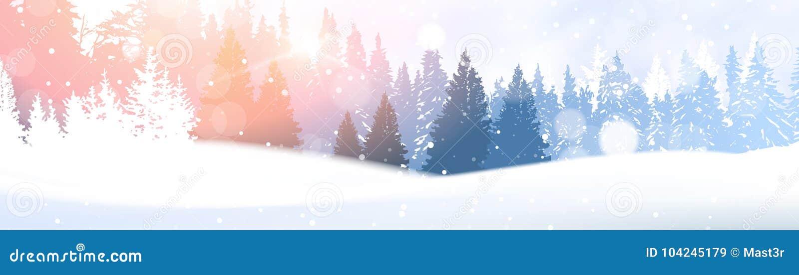 День в снеге леса зимы накаляя под предпосылкой древесин сосны Snowy ландшафта полесья солнечности белой