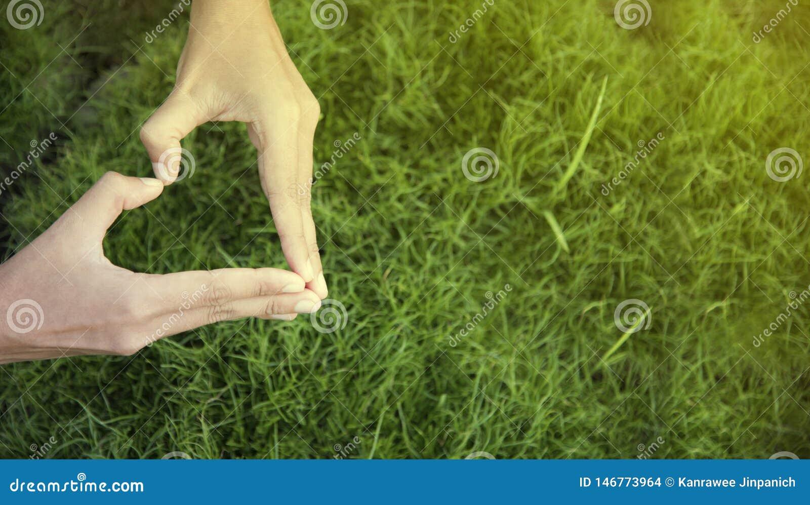 День окружающей среды Рука женщины в форме сердца на предпосылке зеленой травы