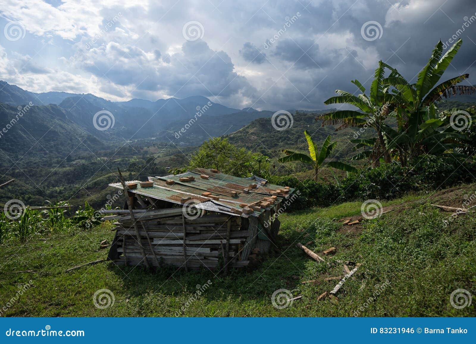 Деревенская лачуга в Колумбии