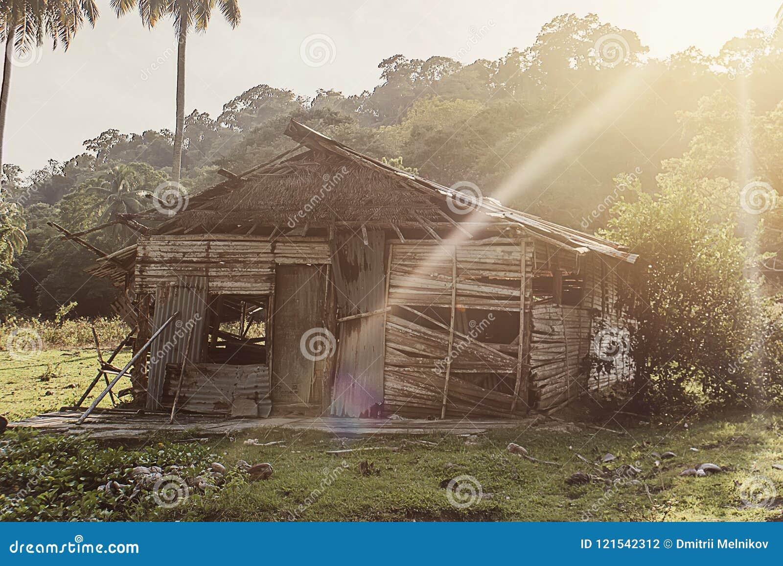Деревенская старая лачуга в тропическом лесе джунглей в Юго-Восточной Азии
