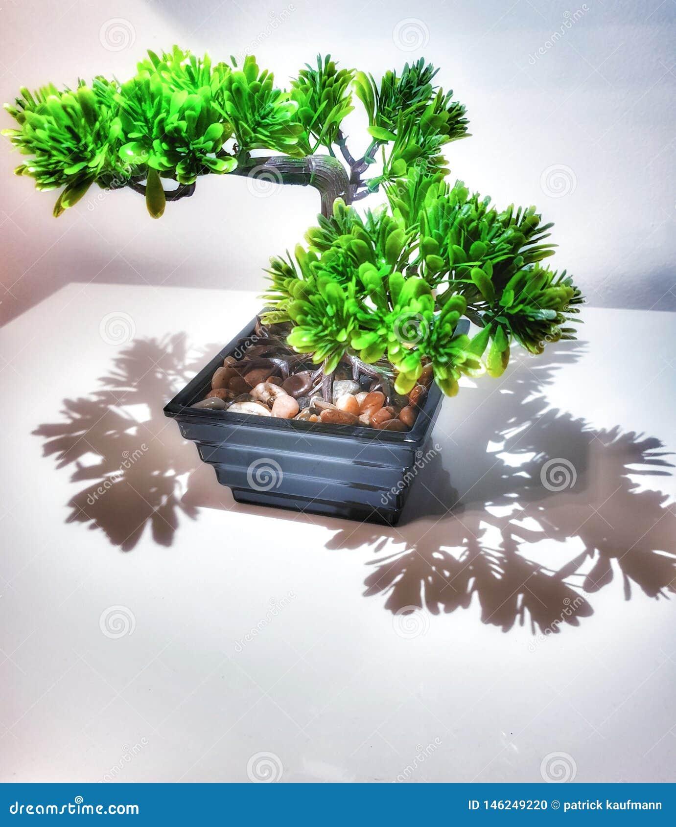 Дерево бонзаев Plastik