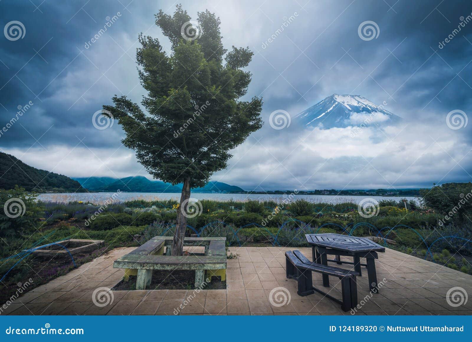 Дерево в саде около озера kawaguchiko с пиком Mt Фудзи b