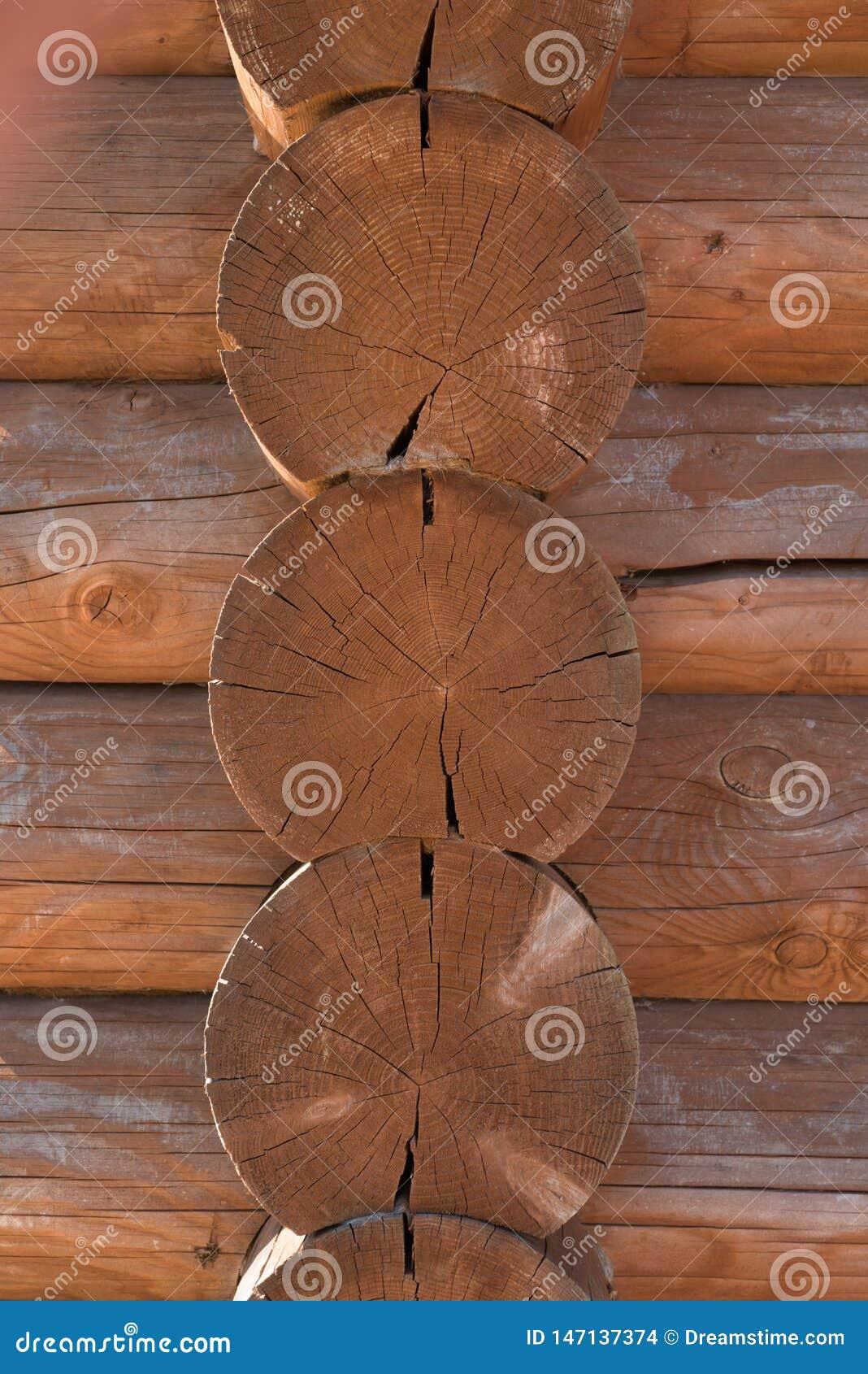 Дерево, стена, круг, древесина, дом, лес,