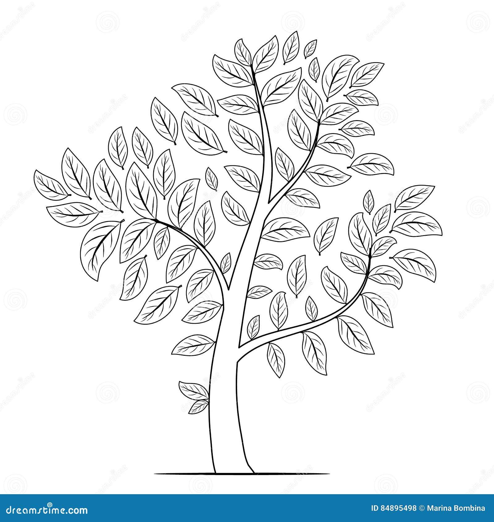 Дерево с силуэтом листьев на белой предпосылке Книжка ...